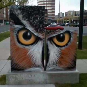 Utility boxes Victoriano was commissioned to paint at 5th & Grant