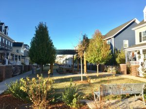"""One of the shared green spaces in Stapleton known as a """"muse."""" Image: Tara Bardeen"""